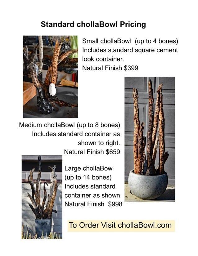cholla bowl price list